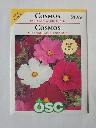Cosmos - Early Sensation Mixed
