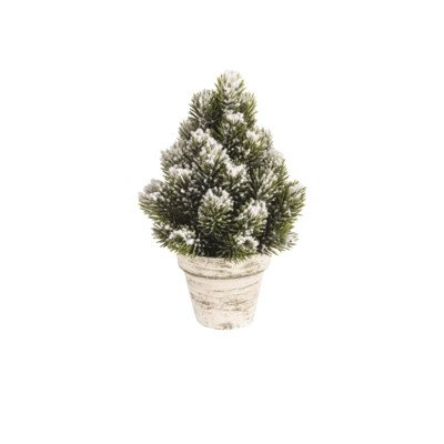 Small Snowy Spruce Tree