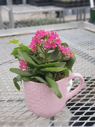 Mug Spring Planter