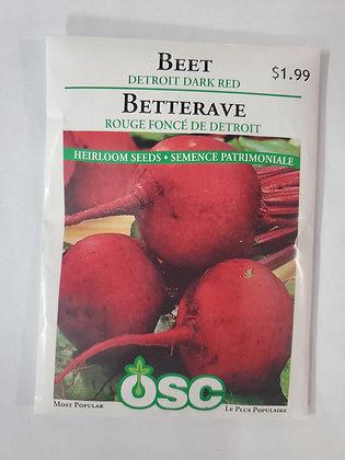 Beet - Detroit Dark Red