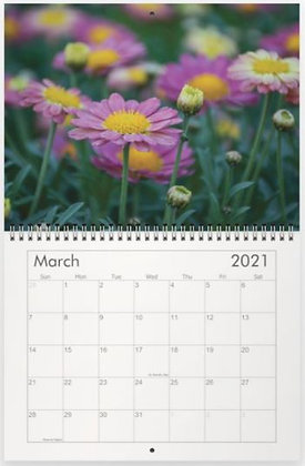 2021 Garden of Eden Calendar