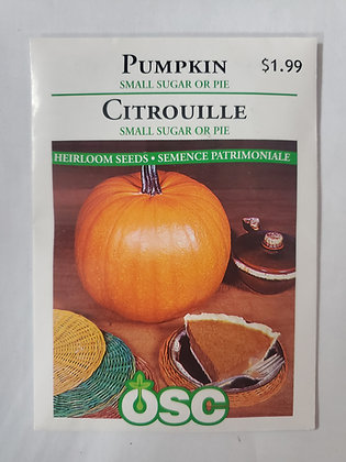 Pumpkin - Small Sugar or Pie