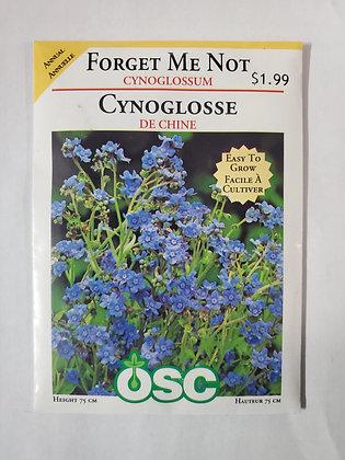 Forget Me Not - Cynoglossum