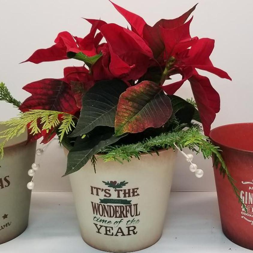 Poinsettia Diffuser Pot