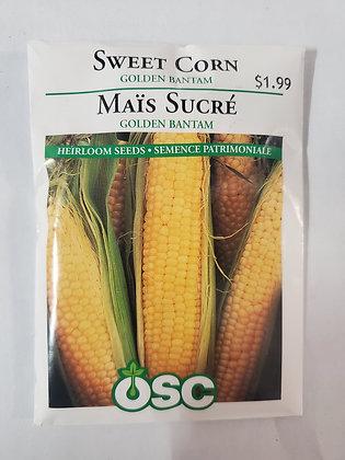 Sweet Corn - Golden Bantam