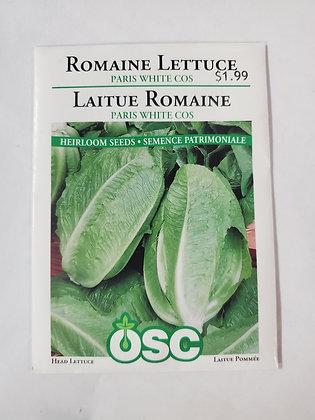 Romaine Lettuce - Paris White Cos