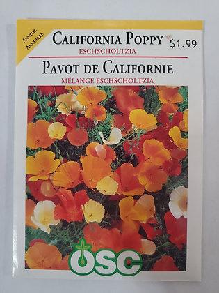 California Poppy - Eschscholtzia