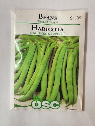 Beans - Tendergreen