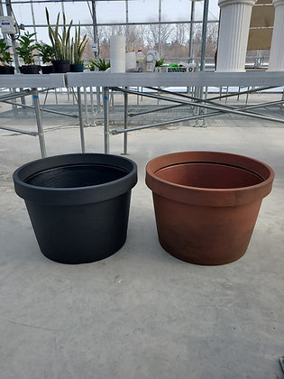 Low Rose Planter
