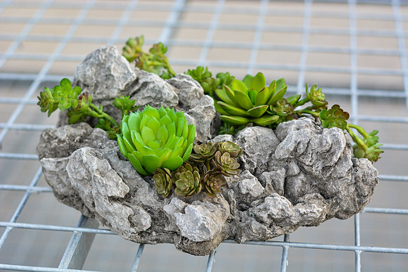 Rock Shard Artificial Succulent Arrangement