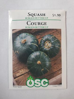 Squash - Burgess Buttercup
