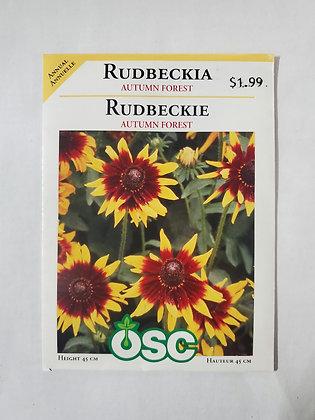 Rudbeckia - Autumn Forest