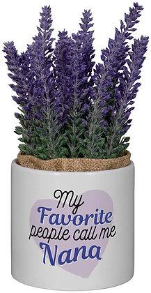 Nana - Planter with Purple Flower