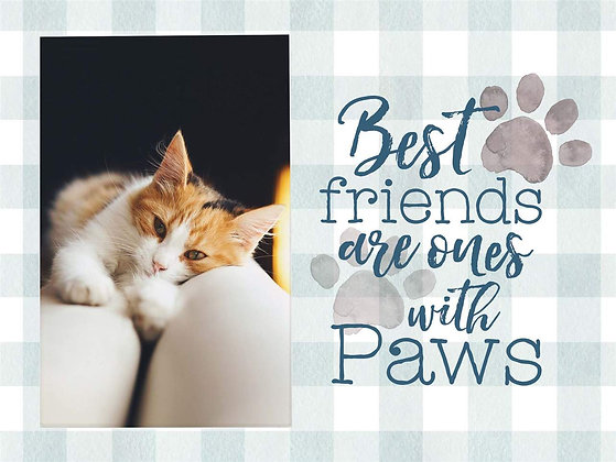 Best friends are ones with paws sign
