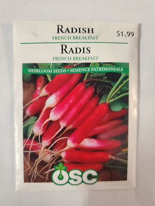 Radish - French Breakfast