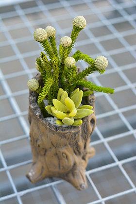 Tree Stump Artificial Succulent Arrangement