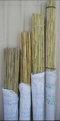 "8' Bamboo Stake 3/4"""