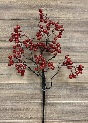 Red Weather Resistant Berries Spray