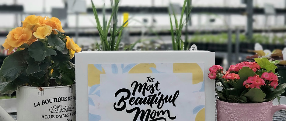 Mothers Day Artisans Box