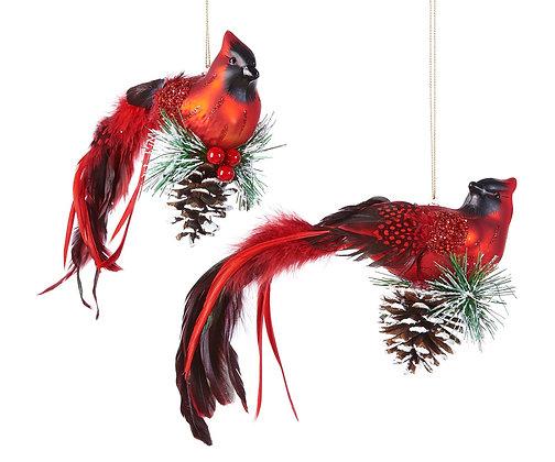 Cardinal with Greenery & Pinecone