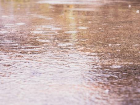 Digital Rain Dance