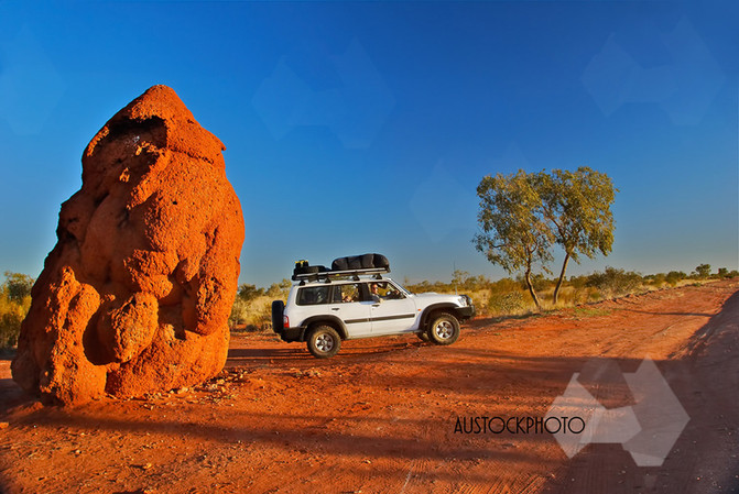 large anthill in outback Australia