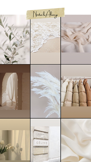 moodboard of neutral and aesthetic images