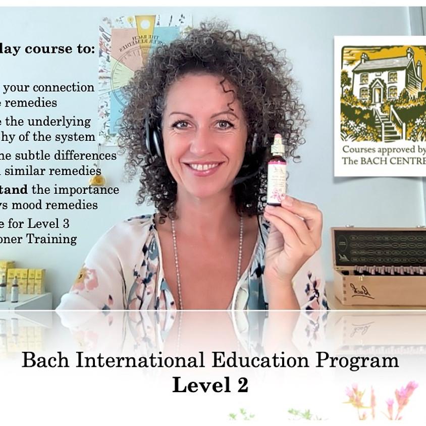 BIEP Level 2  - Advanced Workshop