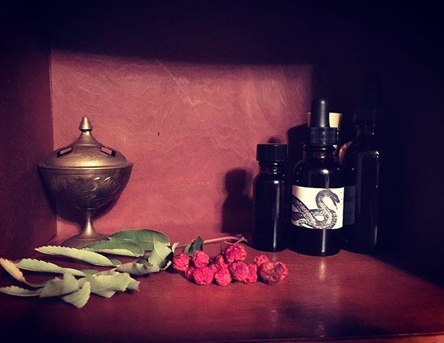 Plant Spirit Medicine Healing