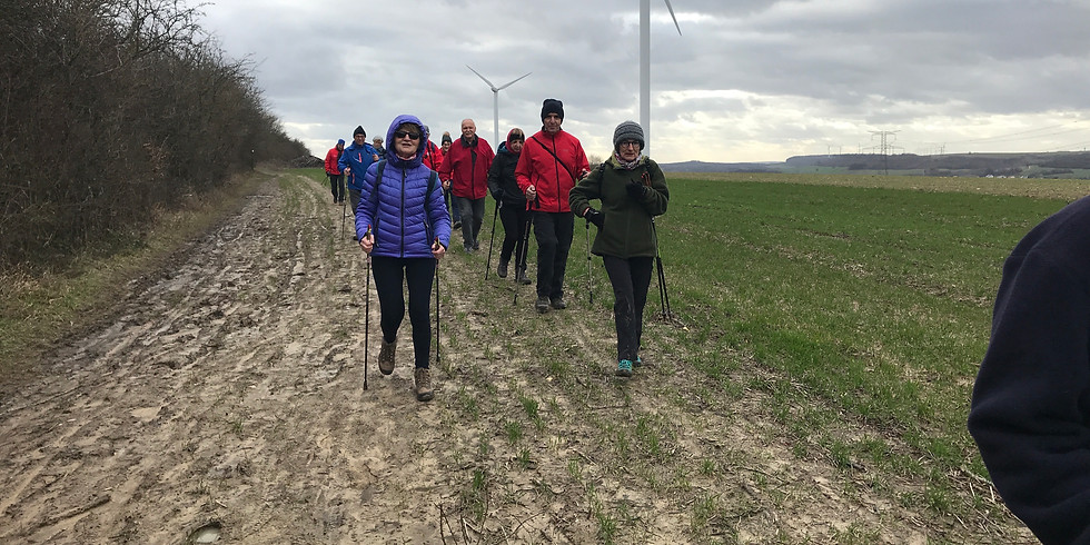 Marche nordique