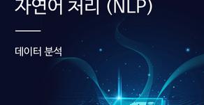 [데이터 분석] 머신러닝과 자연어 처리 (NLP)