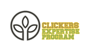 LOGO CLICK EXPERTISE.png