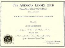 Black Value Cavaliers Oxana CGC AKC