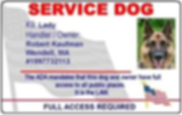 Service Dog ID German Shepherd