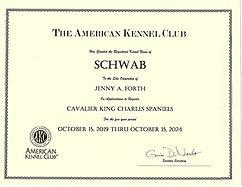 AKC Kennel Registration certificate Cavalier King Charles Spaniel Breeder