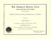 Tchamp AKC CGC certificate.jpeg