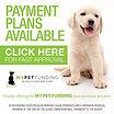 My Pet Funding Logo Pet Financing