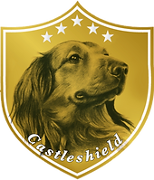 Dachshunds Of Castleshield Logo 2.PNG
