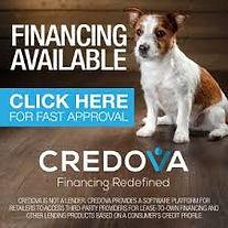 Pet financing credova mypetfundin