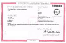 C'est La Vie Vom Erlenbacher-Hemmerich Cardiac Test