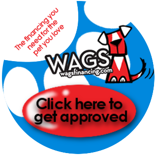 We are now a proud partner of WAGS Financing!