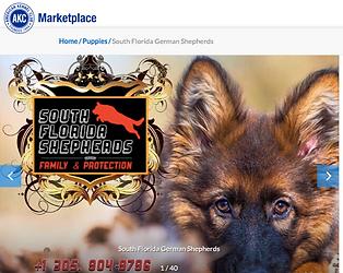 South Florida German Shepherds Logo