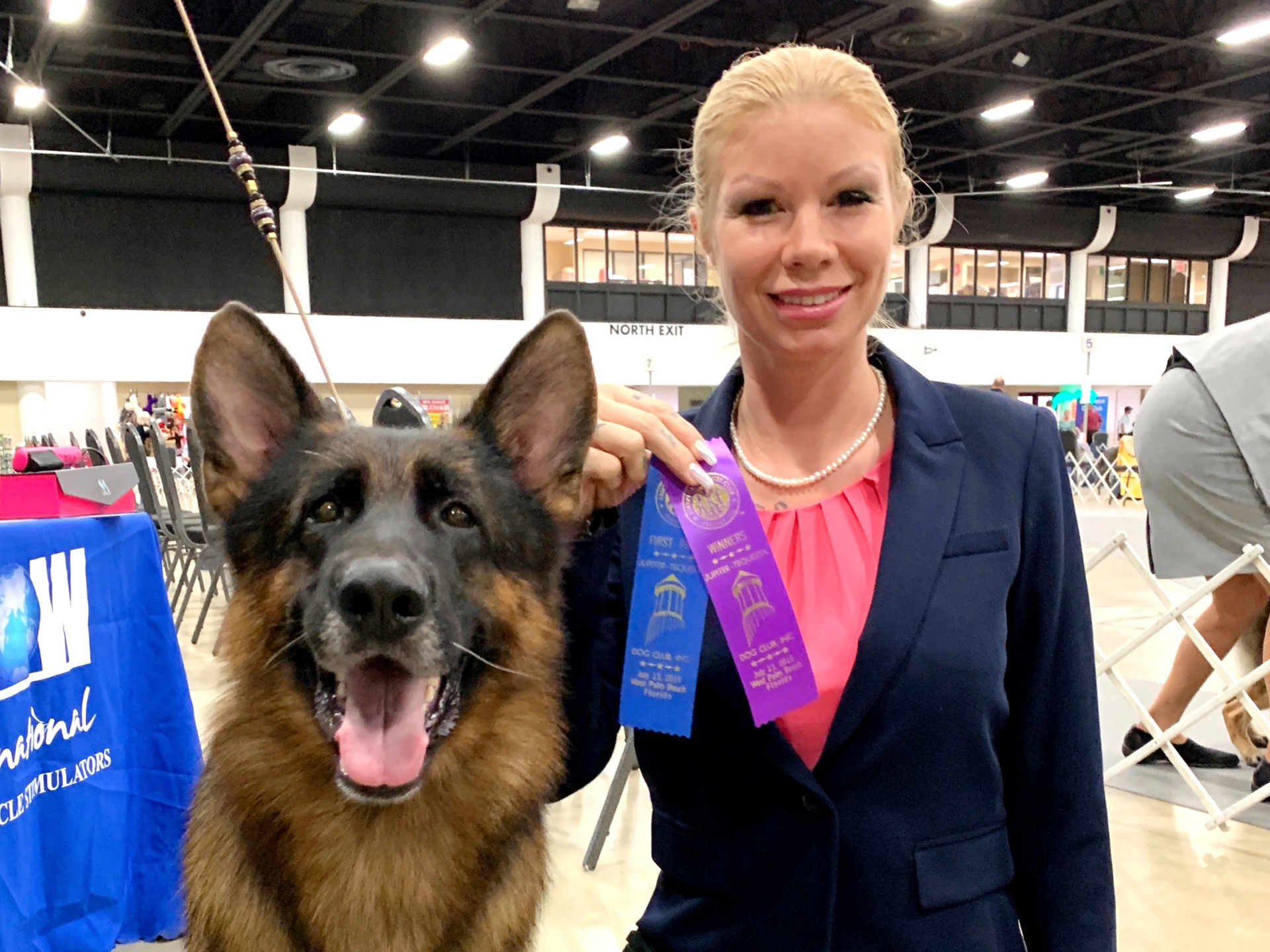 Zornig Gino Best of Winners AKC Show