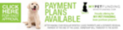 Dog financing my pet funding payment pla