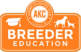 AKC Breeder Education German shepherd pups