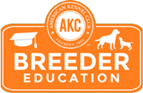 AKC Breeder Education German shepherd pups