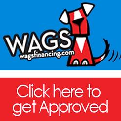 Wags lending Logo Pet Financing