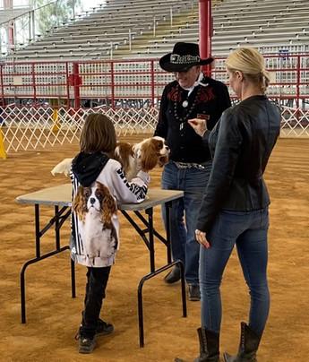 World Class Cavaliers, Cavalier King Charles Spaniel breeder