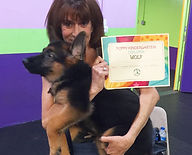 Dog training, canine good citizen, akc, miami florida, south florida german shepherds