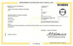 Faberge Von Starburg OFA partellar certificate